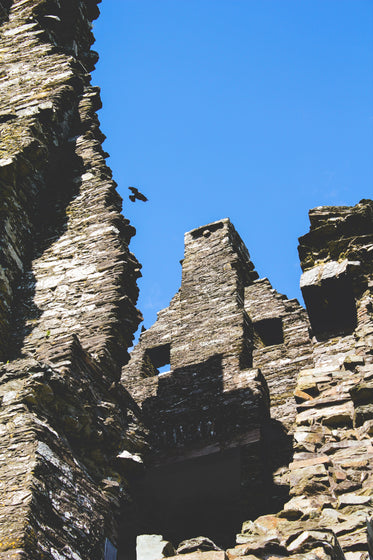lone crow floats on wind up the wall of a rustic castle