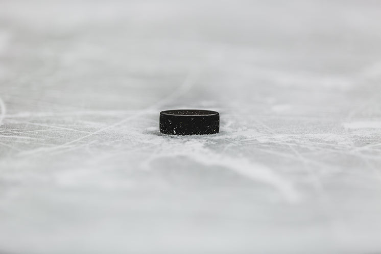 Lonely Black Dot On The Ice