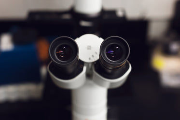Free Look Through The Microscope Image: Browse 1000s of Pics