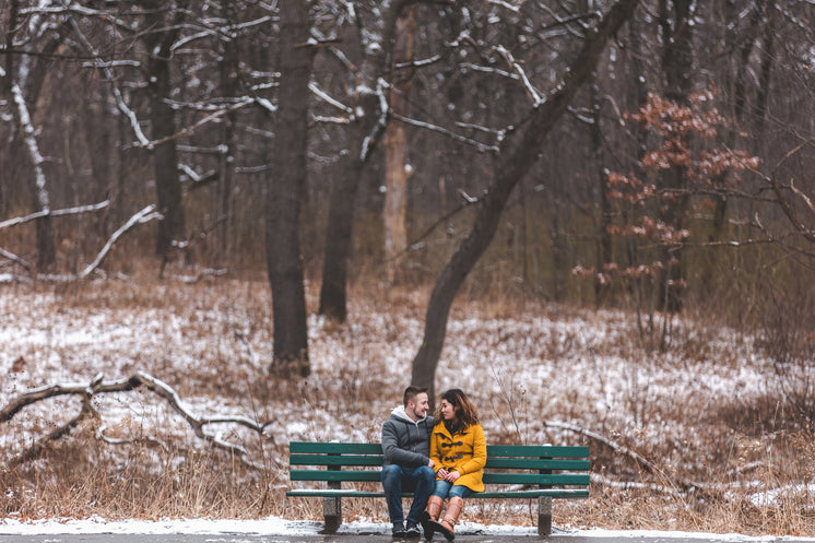 Man And Woman Chat On A Bench In A Snowy Park
