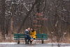 man and woman hold hands on a bench in a snowy park