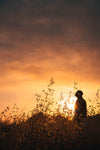 man in field at sunset