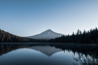 mount hood peaks through forest