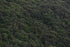 Free Mountain Trees Green Texture Photo — High Res Pictures