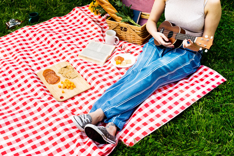 Music On A Summer Day Picnic