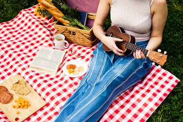 musical romantic afternoon picnic