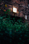 number two lit on a brick wall above green leaves