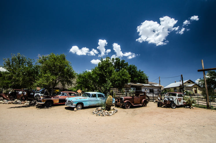 Old Rusty Cars Sit Under Trees In The Desert