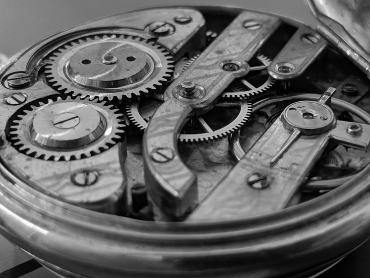 Open Timepiece Exposing Cogs And Gear Wheels