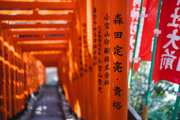 orange poles with japanese characters create a tunnel