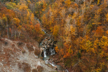 overhead view of waterfall in autumnal forest