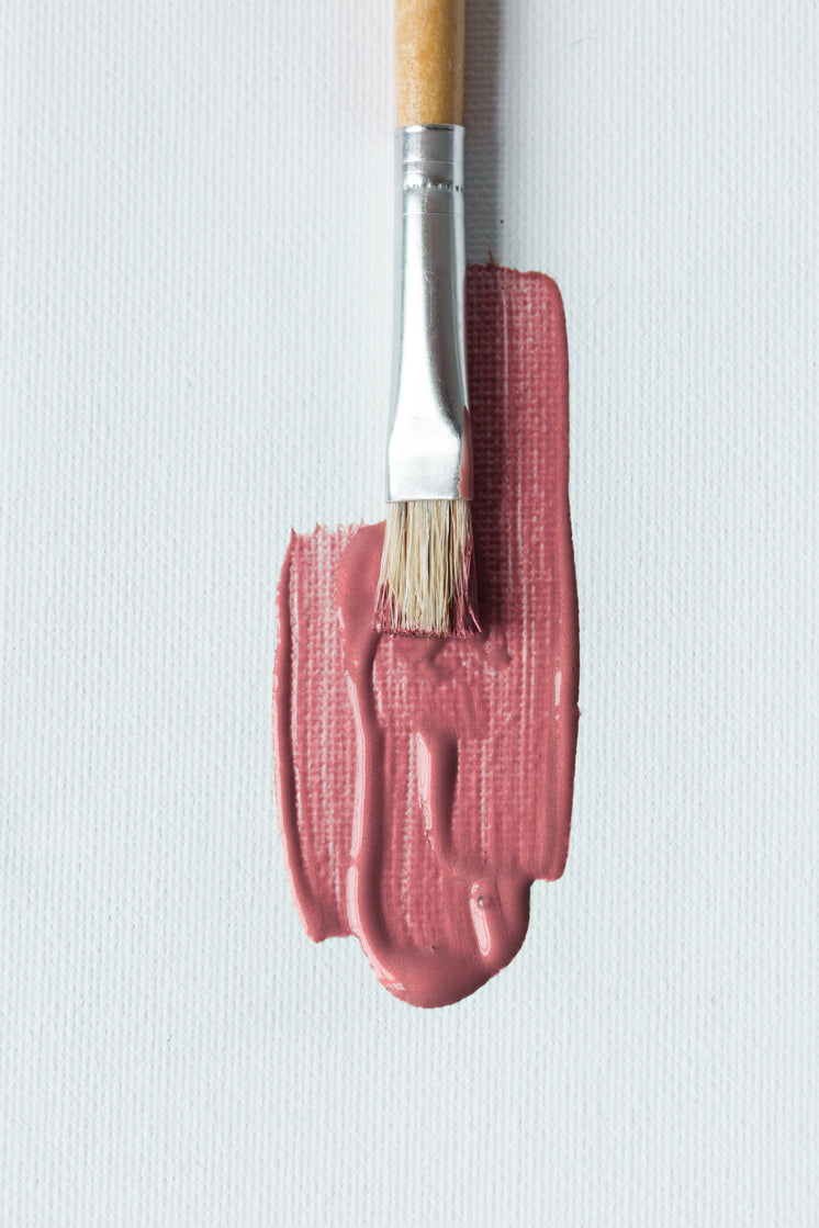 paintbrush-with-pink-on-canvas-.jpg?width=746&format=pjpg&exif=0&iptc=0