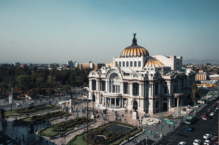 Palacio De Bellas Artes Wide Shot