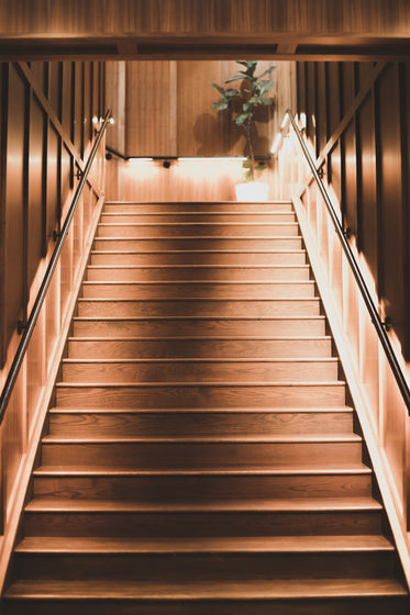 peering up a wooden staircase basked in light