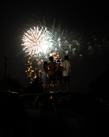 people stand together and watch the fireworks overhead