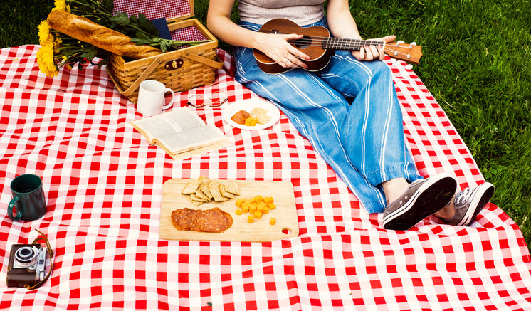 Perfect Afternoon Picnic With Food And Music