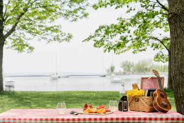 perfect picnic in park by the shore