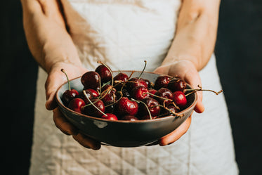 person holds a bowl of cherries out in front of them
