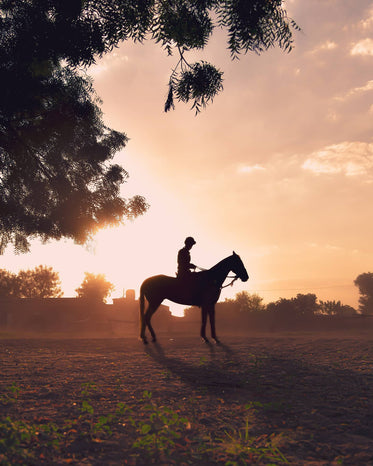 person silhouetted on a horse in a open field