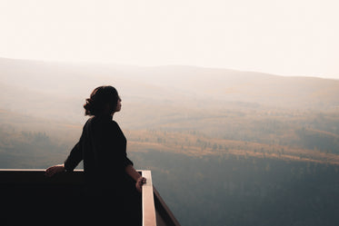 person stands at a lookout and takes in the vista