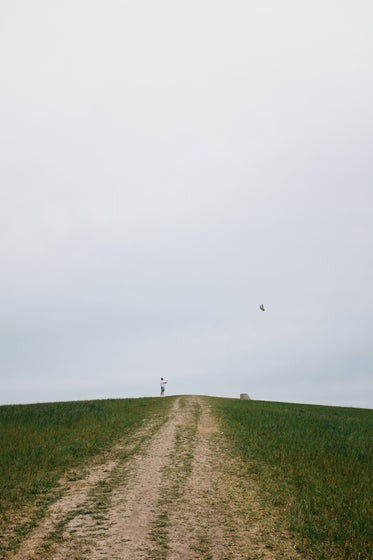 person stands on hill and flies a kite