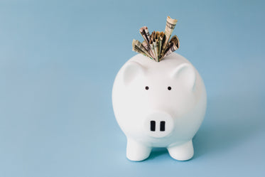 Browse Free HD Images of Piggy Bank Savings