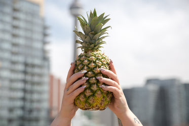 pineapple in the city