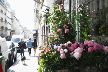 pink roses and peonies outside a flower shop in paris