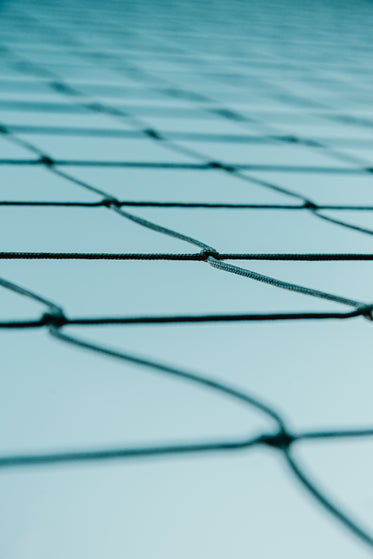 portrait view of some netting