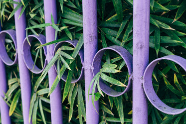 purple metal fence with green leaves