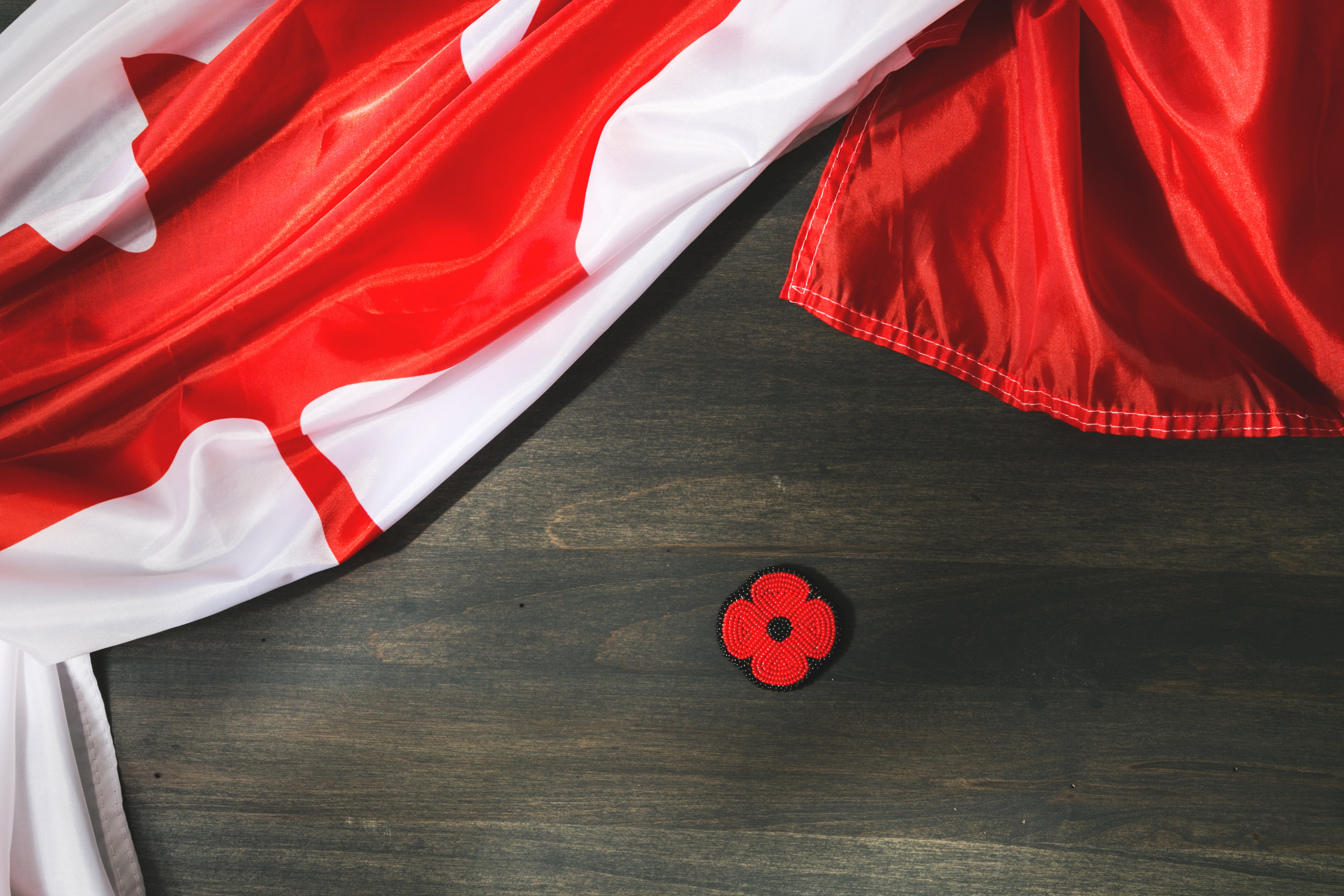 browse free hd images of remembrance day canada