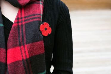 remembrance day poppy pin