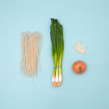 rice noodles and onions against a light blue background
