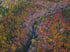 Browse Free HD Images of River Running Through Autumn Landscape
