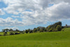 rolling grassy hillside under blue sky with puffy clouds