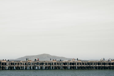 Picture of San Francisco Pier - Free Stock Photo