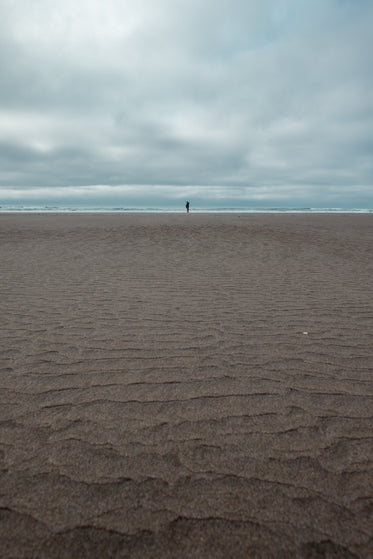 sandy beach and person oceanside