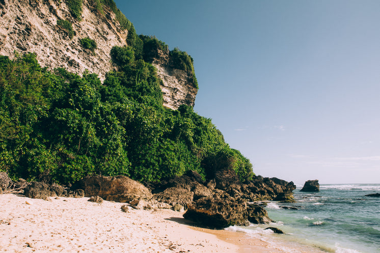 Sandy Beach Surrounded By Rocky Cliff And Jungle