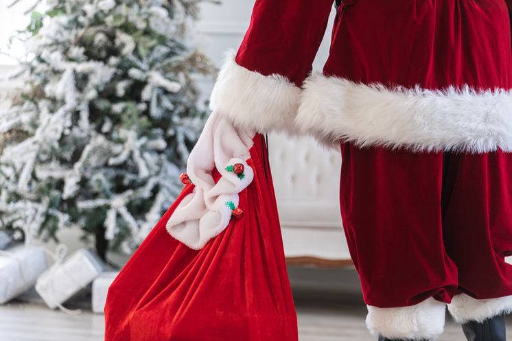 Santa Holds His Bag Of Toys
