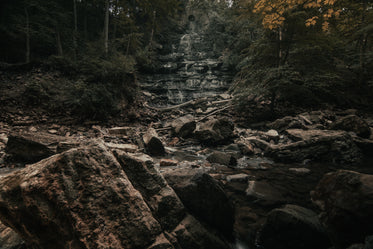 scattered rocks below thick forest