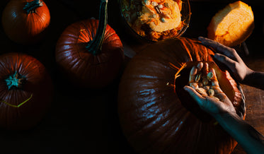 scooping seeds out of a pumpkin