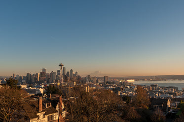 seattle skyline and mountains