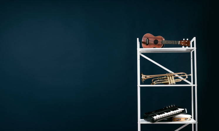 Shelving With Musical Instruments