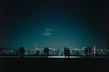 silhouetted couples look out at a city at night