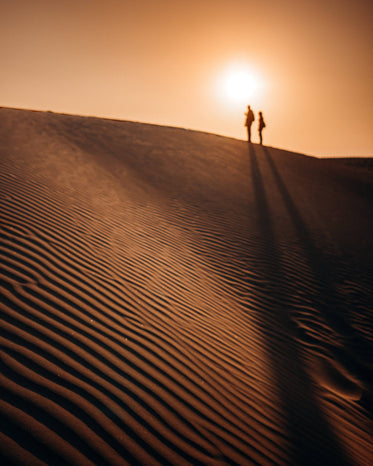 silhouettes of people at the top of a sand dune