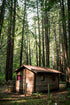 Free Small Cabin In The Woods Photo — High Res Pictures