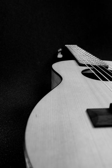 small guitar black and white