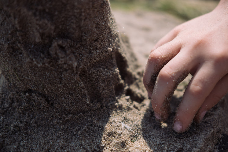Small Hand In The Sand