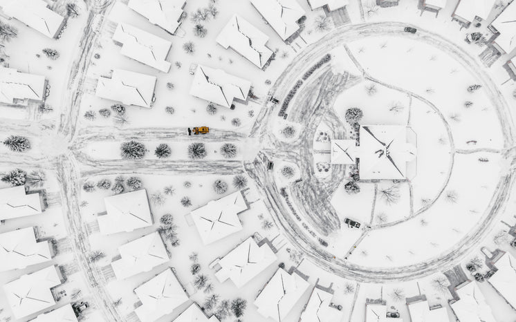 Snow-Covered Circular Streets