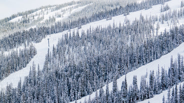 snow covered mountain with chair lift